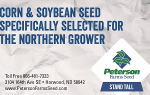 Peterson Seed Farms