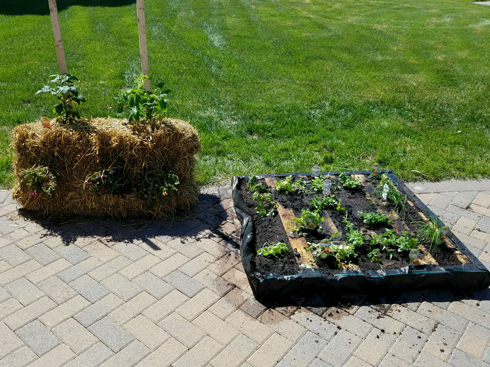 Cass county soil conservation pallet and bale gardens for Garden soil for sale